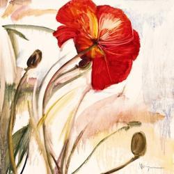 Crimson Poppy 1 | Obraz na stenu