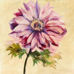 Garden Splender I | Obraz na stenu