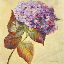 Garden Splender III | Obraz na stenu