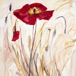Wild Poppy III | Obraz na stenu