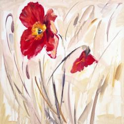 Wild Poppy IV | Obraz na stenu