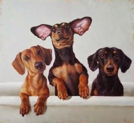 3 Amigos | Obraz na stenu