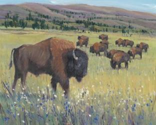 Animals of the West I   Obraz na stenu