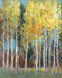 Aspen Grove II | Obraz na stenu
