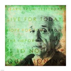 Einstein – Live & Learn Quote | Obraz na stenu