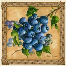 Blueberries   Obraz na stenu