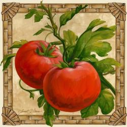 Tomatoes | Obraz na stenu