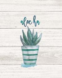 Aloe Ha | Obraz na stenu