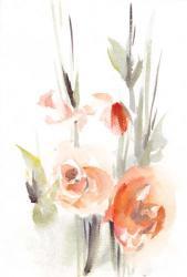 Apricot Sage | Obraz na stenu