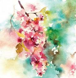 Bright Blossoms | Obraz na stenu