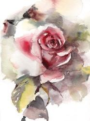 A Rose is Still a Rose | Obraz na stenu