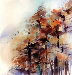 Fall Forest | Obraz na stenu