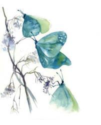 Blue Butterflies | Obraz na stenu