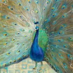 Blue Peacock on Gold | Obraz na stenu