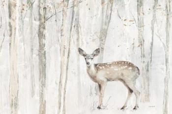 A Woodland Walk VII | Obraz na stenu