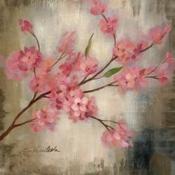 Cherry Blossom I | Obraz na stenu