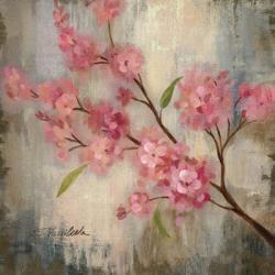 Cherry Blossom II | Obraz na stenu