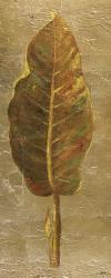 Arte Verde on Gold I | Obraz na stenu