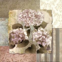 Botanical Hydrangeas | Obraz na stenu