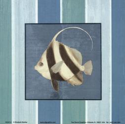 Fish on Stripes I | Obraz na stenu