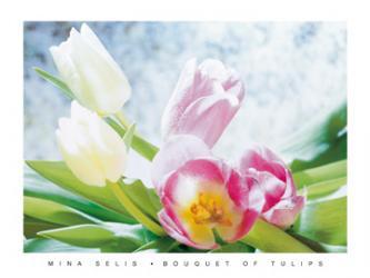 Bouquet of Tulips   Obraz na stenu