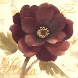 Abundant Floral I | Obraz na stenu