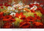 [Meadow Poppies II]