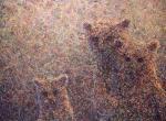 [3 Bears]